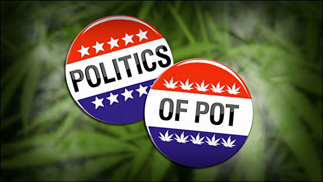 Cannabis Patients Alliance: Marijuana Legalization And Elections: The Devil Is In The