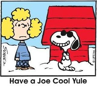 joe cool yule