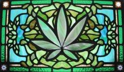 cannabis-01