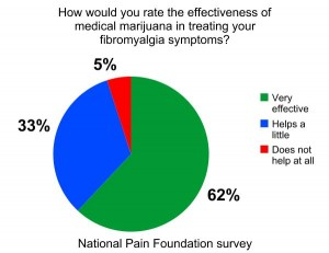 National Pain Foundation Survey