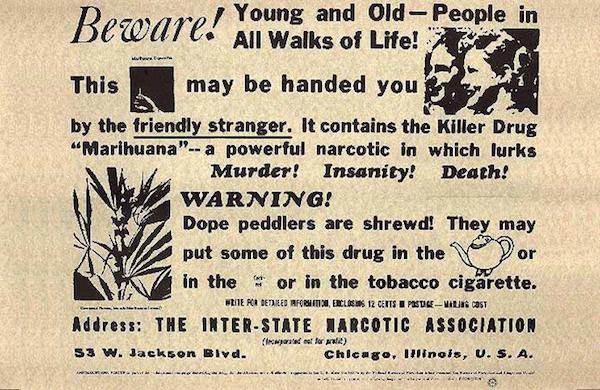 marijuana-truth